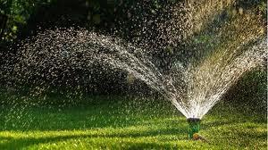 watering in summer